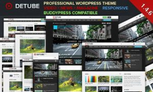 Detube WordPress theme review adult tube websites